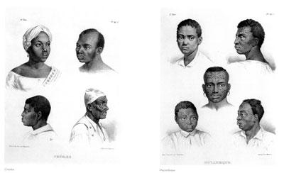etnias2.jpg